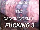 SHELLEY GANG FUCKED PT (4)